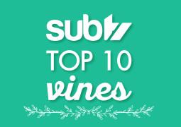 Top 10 Christmas Vines!