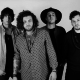 Artist Of The Week - THE WHOLLS